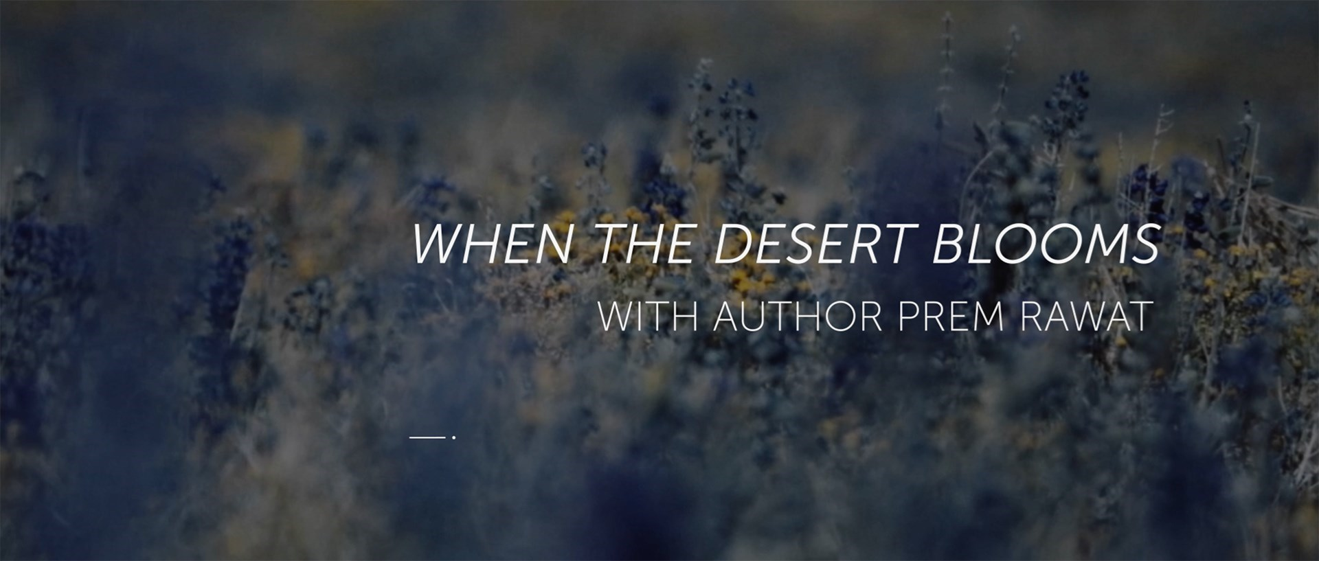 'When the Desert Blooms' LiveStream