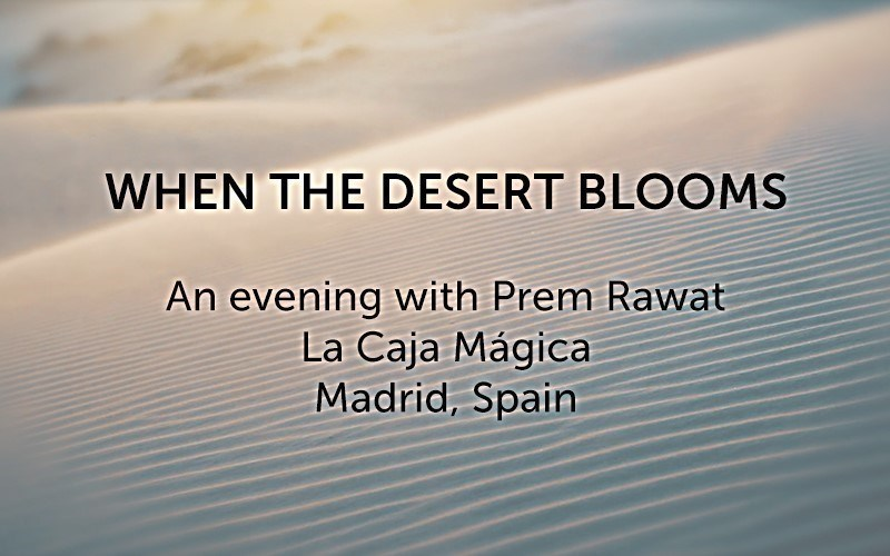 When the Desert Blooms (Video)