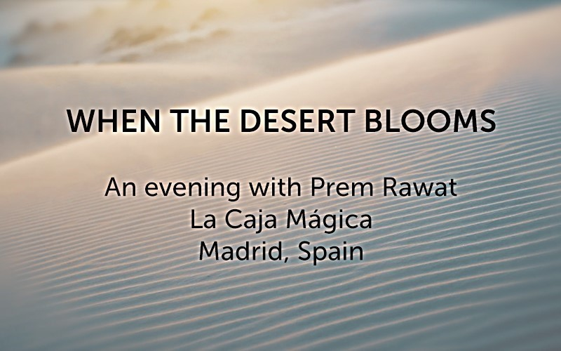 When the Desert Blooms (Audio)