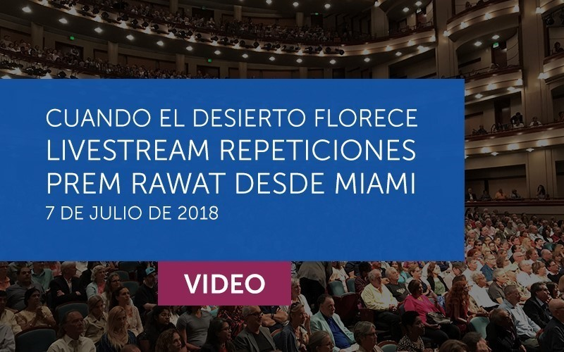 Miami Video LiveStream Repeticiones (Español)