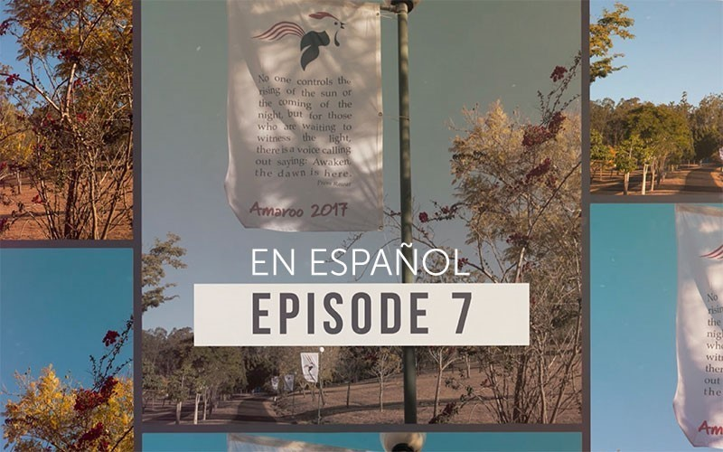 Episodio 7 de la Serie Amaroo 2017 (Video) Español