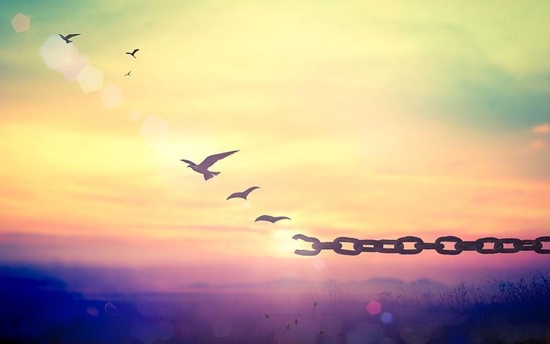 असली स्वतंत्रता (Asli Swatantrata)