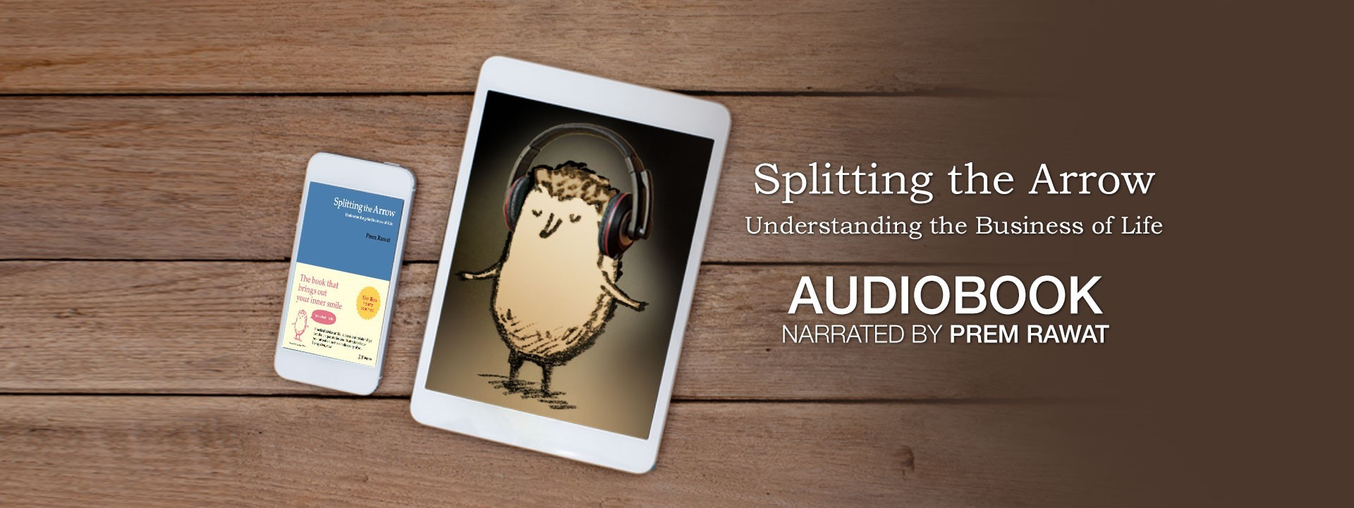 Splitting the Arrow (Audiobook)