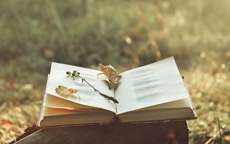 जीवन की किताब (Jeevan Ki Kitaab)
