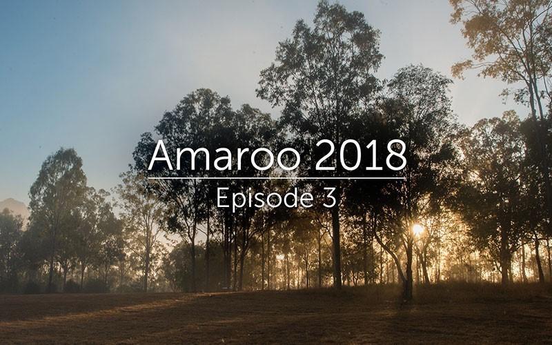 Amaroo 2018 Episode 3 (Video)