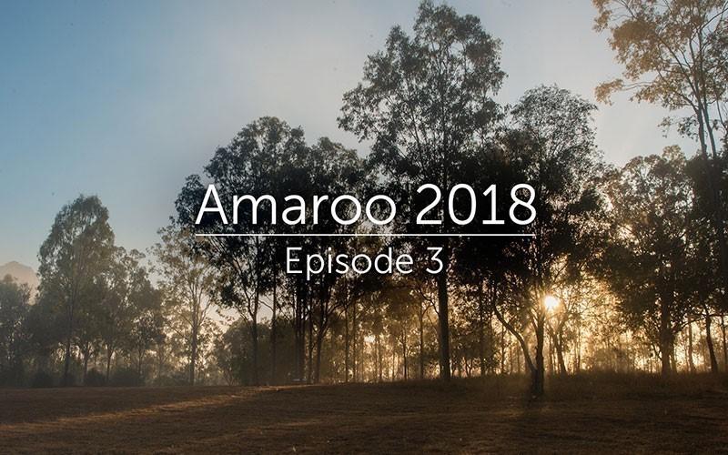 Amaroo 2018 Episode 3 (Audio)
