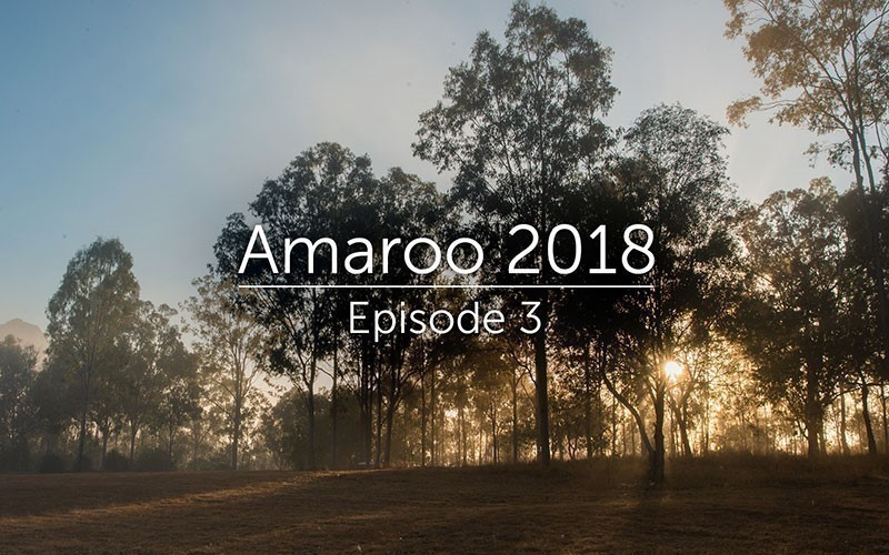 Amaroo 2018 Episode 3 (Video)