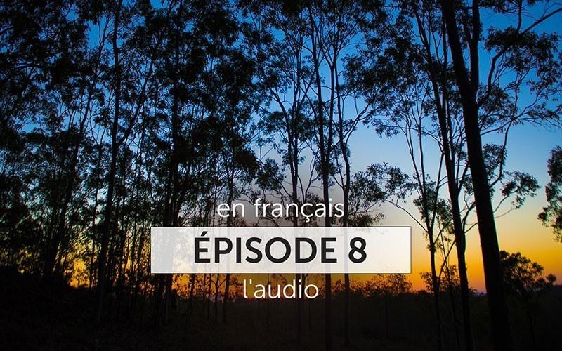 La série Amaroo 2017 - Épisode 8 (Audio)