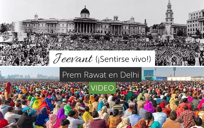 "Jeevant (""Sentirse vivo"") - Video"