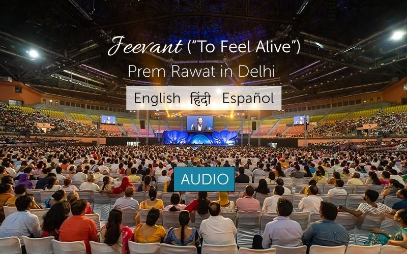 "Jeevant (""To Feel Alive"") - Audio"