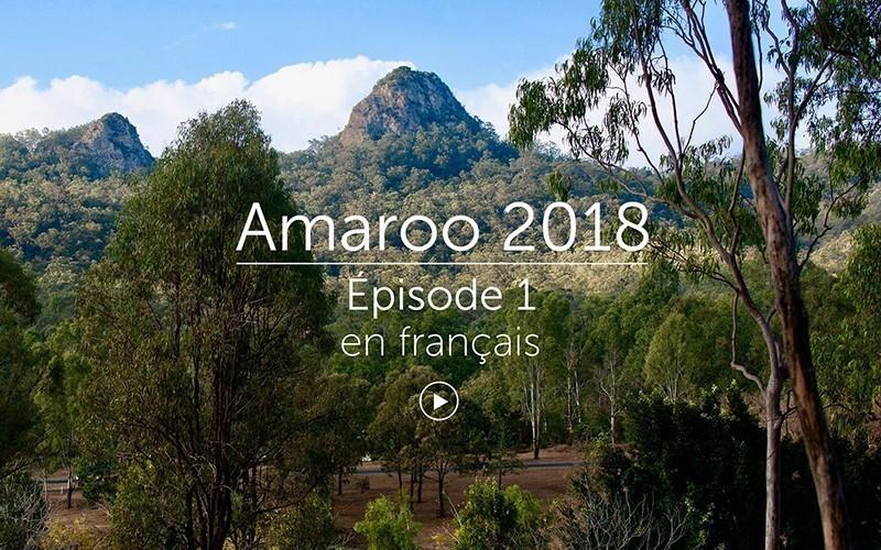 Amaroo 2018 Épisode 1 - français (vidéo)