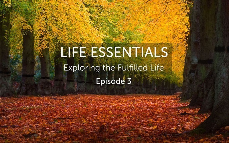 Life Essentials, Episode 3 (Trailer)