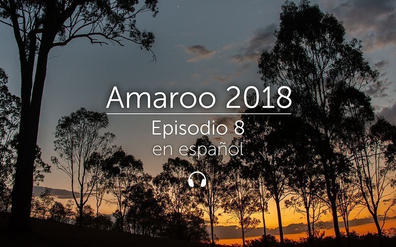 Amaroo 2018 Episodio 8 - español (audio)