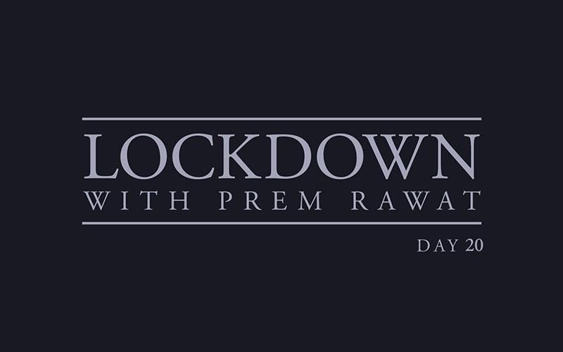 Lockdown, Day 20