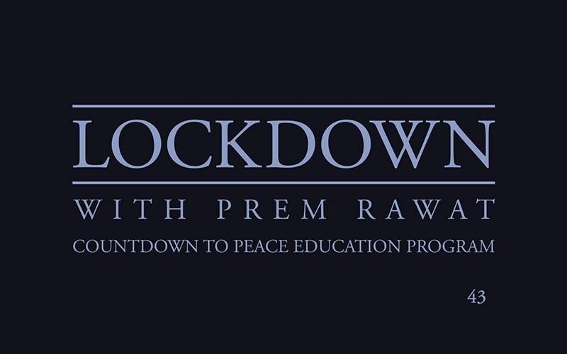 Lockdown, Day 43