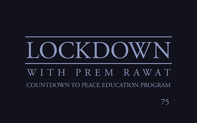 Lockdown, Day 75