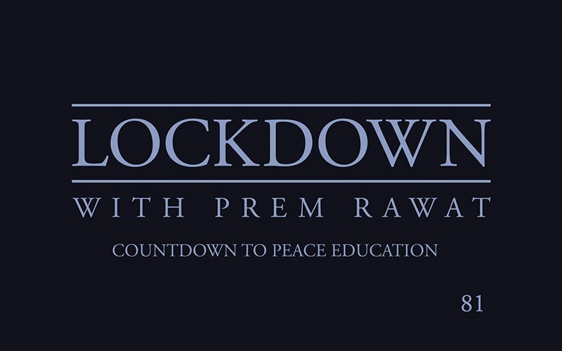 Lockdown, Day 81