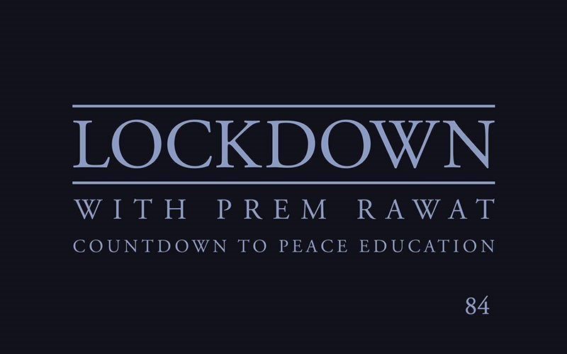 Lockdown, Day 84