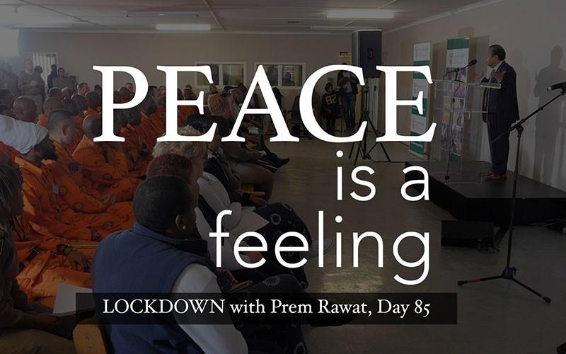 Lockdown, Day 85