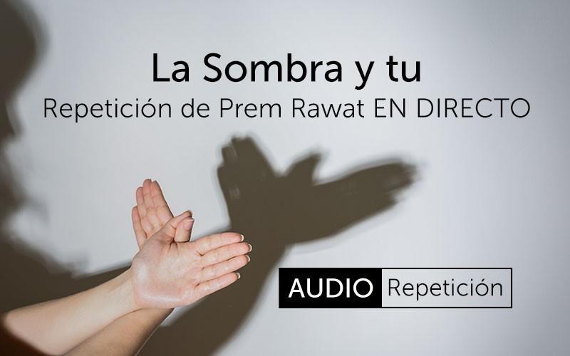 La Sombra y tu (Audio)