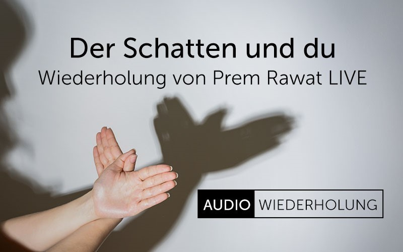 Der Schatten und Du (Audio)