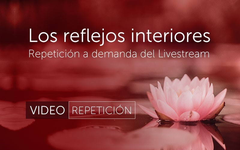 Los reflejos interiores (video)