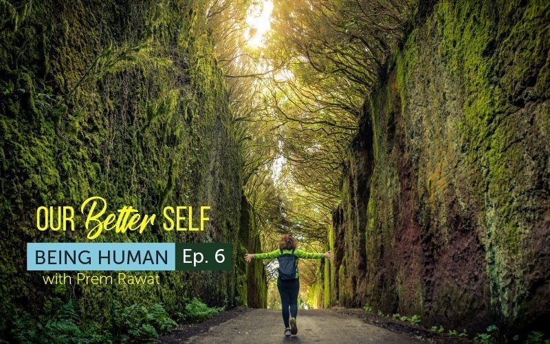 Our Better Self (Audio)
