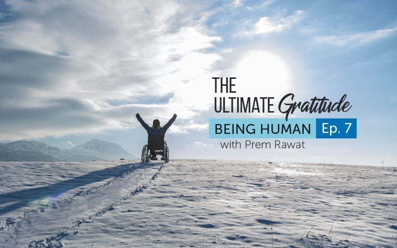 The Ultimate Gratitude (Video)
