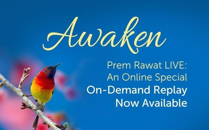 Awaken (Audio)