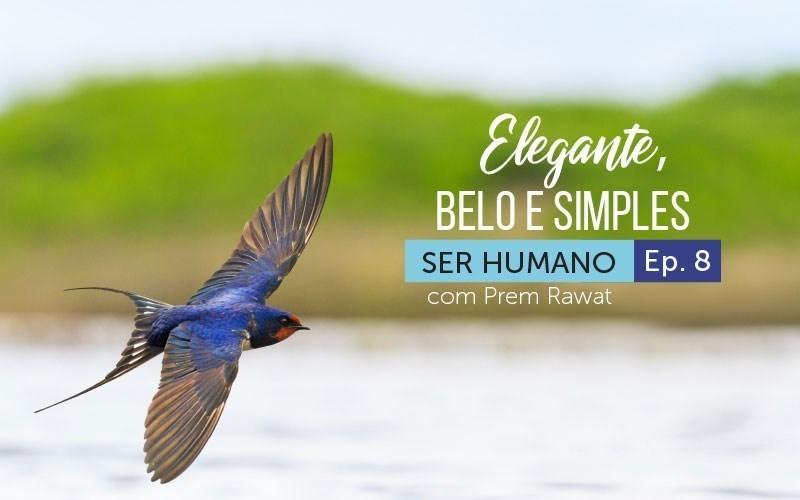 Elegante, belo e simples (audio)