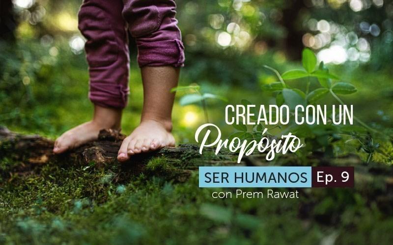 Creado con un propósito (audio)