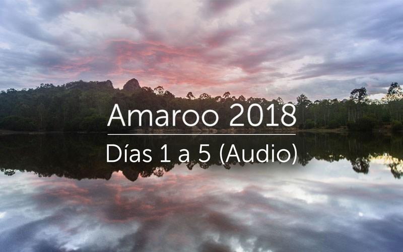Amaroo 2018 (Audio)