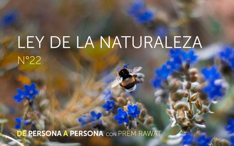 Ley de la Naturaleza