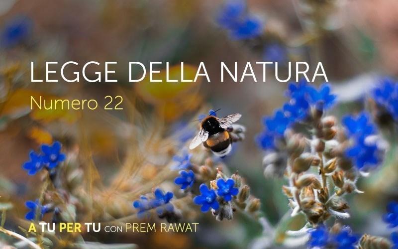 Legge della natura