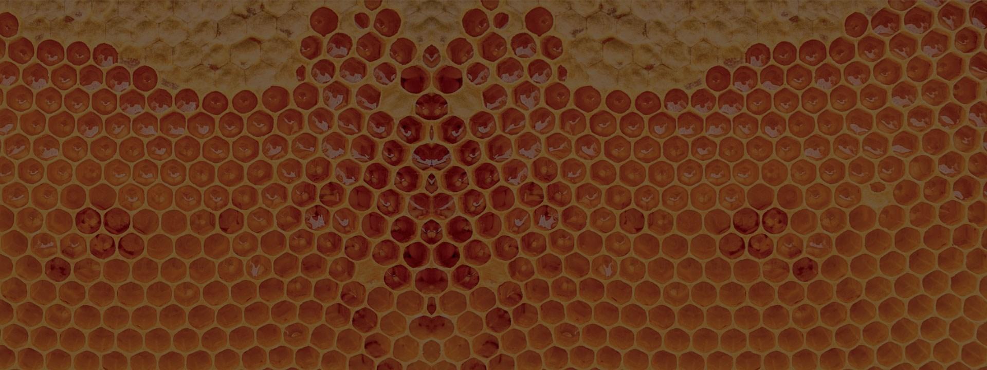 Sweeter than Honey (Video)